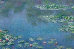 1933.1157-Water-Lilies