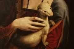 Leonardo500-15-Hölgy-hermelinnel